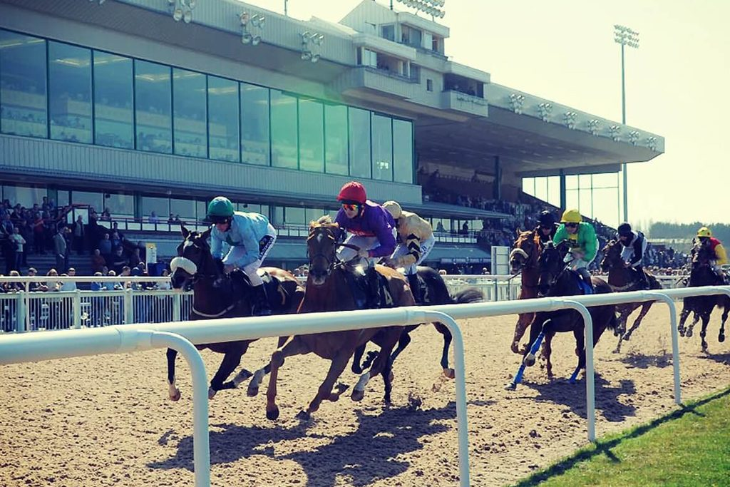 Wolverhampton Racecourse close up of horses racing